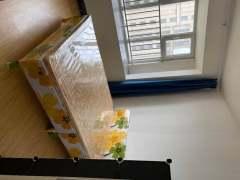 (双山)鲁能公馆3室2厅1卫100m²精装修1300元有配套