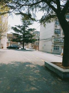 (双山)福泰·新都城-西区3室2厅2卫143m²